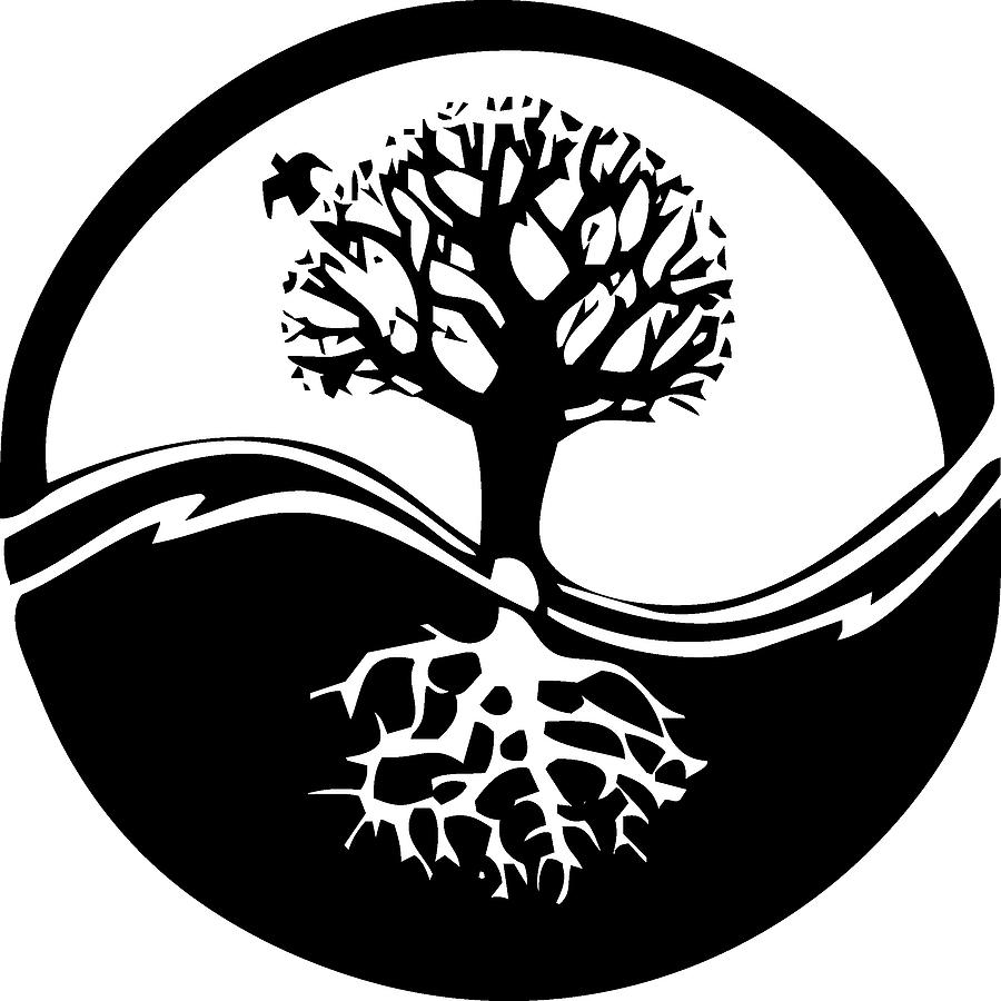 bigstock_Yin_Yang_Tree_1240661